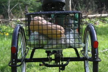 Электровелосипед трицикл Doonkan Trike 24 Трехколесный велосипед для взрослых складной 500w (109)