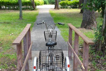 Трехколесный велосипед для взрослых взрослый для взрослого складной Трицикл Doonkan Trike 20 (76)